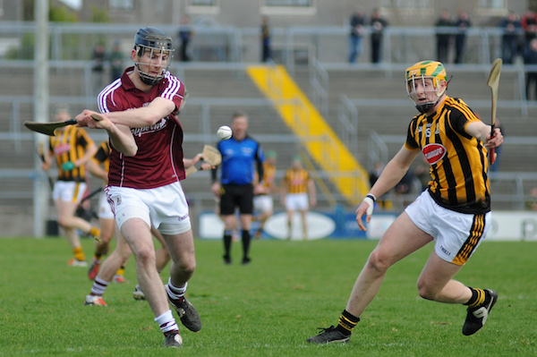 How does the sport of hurling work?